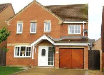 Thumbnail 4 bedroom property to rent in Ilex Close, Hampton Hargate, Peterborough