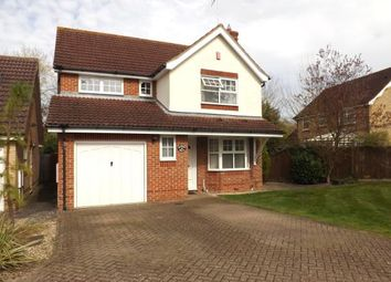 Thumbnail 4 bed detached house for sale in Warren Drive, Southwater, Horsham, West Sussex