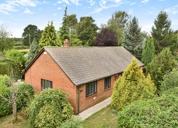 Thumbnail 3 bed detached house for sale in The Paddocks, Marden, Hereford
