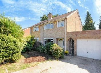 Thumbnail 3 bed semi-detached house for sale in Rare Opportunity. Whitelands Drive, Mill Ride, Ascot, Berkshire