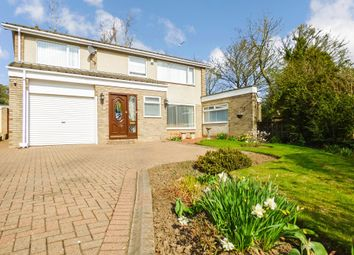 Thumbnail 4 bed detached house for sale in Lorimers Close, Peterlee