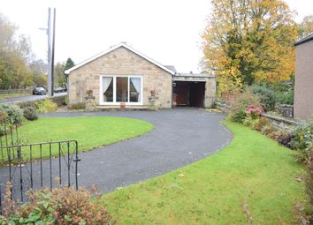 Thumbnail 3 bed bungalow to rent in The Terrace, Acomb