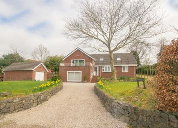 Thumbnail 4 bed detached house for sale in Summerhills, Old Carlisle Road, Moffat, Dumfries & Galloway