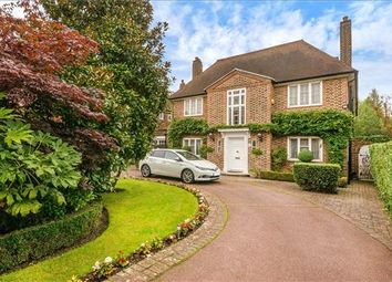 Thumbnail 6 bed detached house for sale in Winnington Road, London
