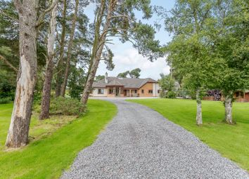 Thumbnail 4 bed bungalow for sale in Feabuie, Culloden Moor, Inverness