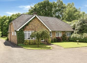 Thumbnail 4 bed detached bungalow for sale in Chobham, Surrey