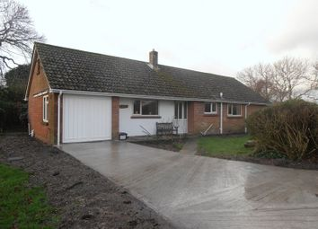 Thumbnail 3 bed detached bungalow to rent in St. Martins Close, Wareham