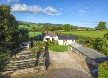 Thumbnail 3 bedroom detached bungalow for sale in Tolcis, Axminster, Devon