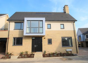 Thumbnail 3 bed semi-detached house to rent in Spirit Drive, Colchester