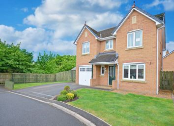 Thumbnail 4 bed detached house for sale in Hazelgrove, Seaton, Workington