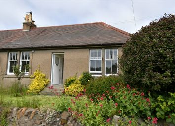 Thumbnail 2 bed bungalow to rent in 2 Hatton Farm Cottage, Leven, Fife