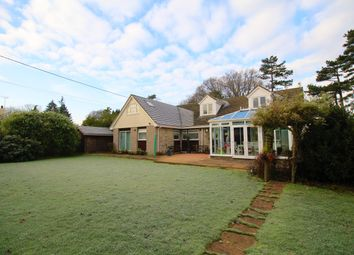 Thumbnail 3 bed bungalow to rent in Ash Green Road, Ash Green, Aldershot
