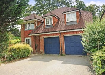 Thumbnail 5 bedroom detached house to rent in The Avenue, Ascot
