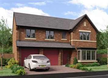"""Thumbnail 5 bed detached house for sale in """"The Buttermere"""" at School Aycliffe, Newton Aycliffe"""