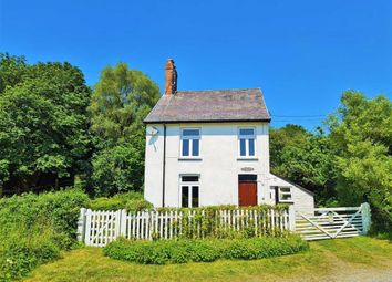 Thumbnail Detached house for sale in Ystrad Meurig