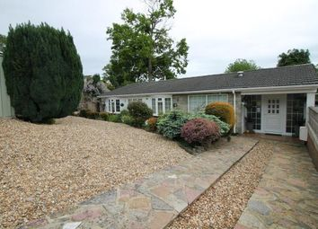 Thumbnail 3 bed bungalow for sale in Frimley, Camberley, Surrey