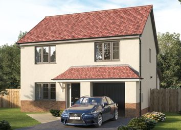 """Thumbnail 4 bed detached house for sale in """"The Oakbrook"""" at St. Martin Crescent, Strathmartine, Dundee"""