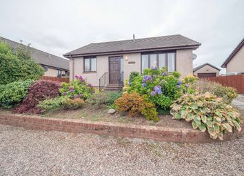 Thumbnail 2 bed detached bungalow to rent in Doctor Lang Place, Brechin