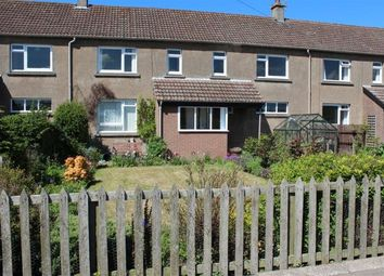 Thumbnail 3 bed terraced house to rent in 3 Wolfstar Farm Cottages, Ormiston, East Lothian