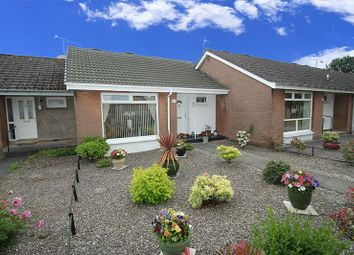 Thumbnail 1 bed bungalow for sale in Sunnyside Court, Alloa