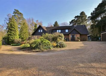 Thumbnail 7 bed detached house for sale in Common Road, Ightham, Sevenoaks
