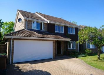 5 bed detached house for sale in Chineham, Basingstoke, Hampshire RG24
