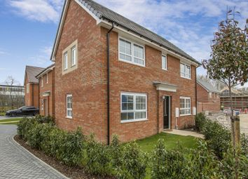 Thumbnail 3 bedroom detached house to rent in Walton Hall Drive, Felixstowe