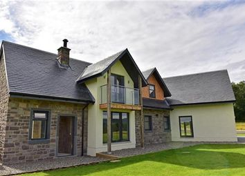 Thumbnail 4 bed detached house for sale in Pitilie View, Aberfeldy, Perthshire