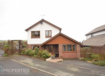 Thumbnail 4 bed detached house for sale in Crugyn Dimai, Aberystwyth