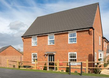 "Thumbnail 4 bedroom detached house for sale in ""Cornell"" at Westend, Stonehouse"