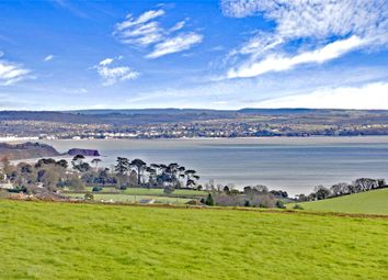 Thumbnail 4 bed detached house for sale in Alta Vista Close, Teignmouth