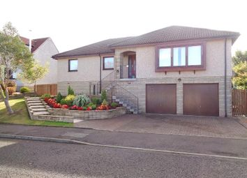 Thumbnail 4 bed detached house to rent in Hogarth Drive, Cupar