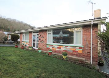 Thumbnail 2 bed bungalow for sale in Cwmhalen, New Quay