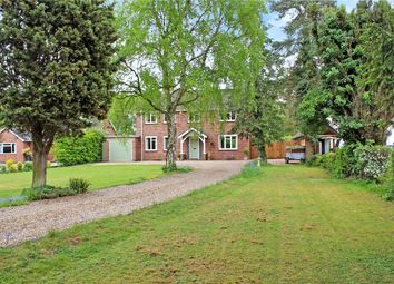 Thumbnail 4 bed detached house for sale in High Green, Brooke, Norwich, Norfolk