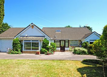 Thumbnail 4 bedroom detached house for sale in Ty'r Winch Road, Old St. Mellons, Cardiff