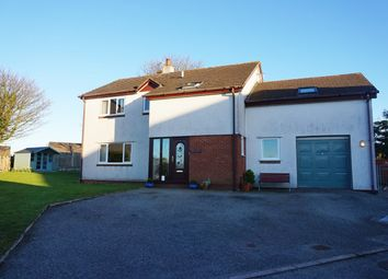 Thumbnail 4 bed detached house for sale in Swn Y Don, Tyn-Y-Gongl