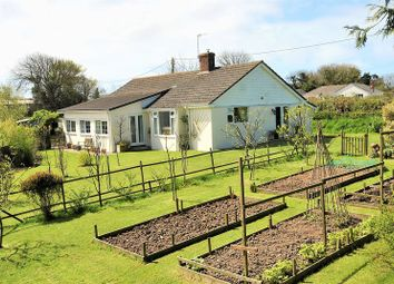 Thumbnail 3 bed detached bungalow for sale in 3 Bedroom Bungalow, Philham, Hartland