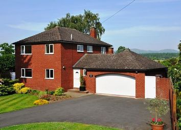 Thumbnail 4 bedroom detached house to rent in Severn Stoke, Worcester