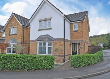 Thumbnail 3 bed detached house to rent in Detached House, Daffodil Lane, Newport