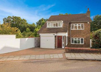 Thumbnail 3 bed detached house to rent in Folkington Corner, London