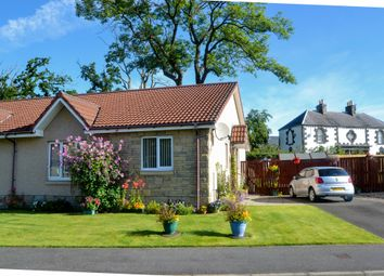 Thumbnail 3 bed semi-detached bungalow for sale in Daly Gardens, High Valleyfield