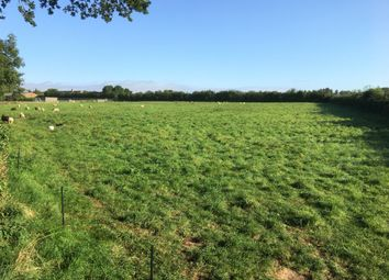 Thumbnail Land for sale in Cams Hill Lane, Hambledon