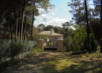 Thumbnail 3 bed detached house for sale in Colares, Colares, Sintra