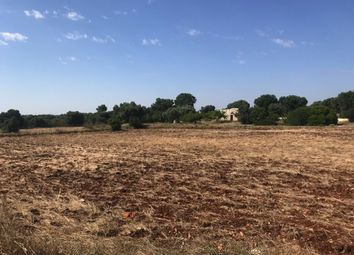 Thumbnail Land for sale in Donnagnora Project C, Ostuni, Puglia, Italy
