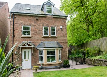 Thumbnail 4 bed detached house for sale in Hollyhurst Court, Riddings, Alfreton