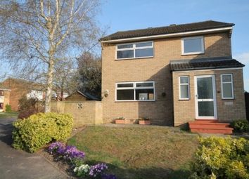 Thumbnail 3 bedroom detached house to rent in Woodland Road, Sawston