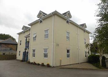 Thumbnail 1 bed flat to rent in South Roskear Terrace, Tuckingmill, Camborne