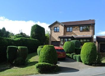 Thumbnail 4 bed detached house to rent in Meadow House Drive, Sheffield