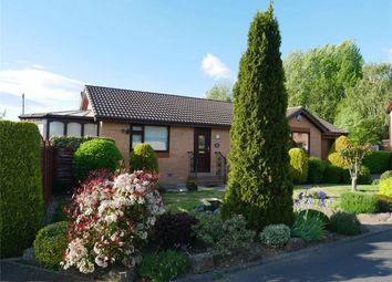 Thumbnail 2 bed detached bungalow to rent in Beckside Gardens, Waterloo, Huddersfield, West Yorkshire