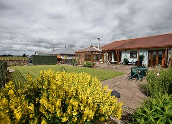 Thumbnail 2 bed semi-detached bungalow for sale in Leetown, Glencarse